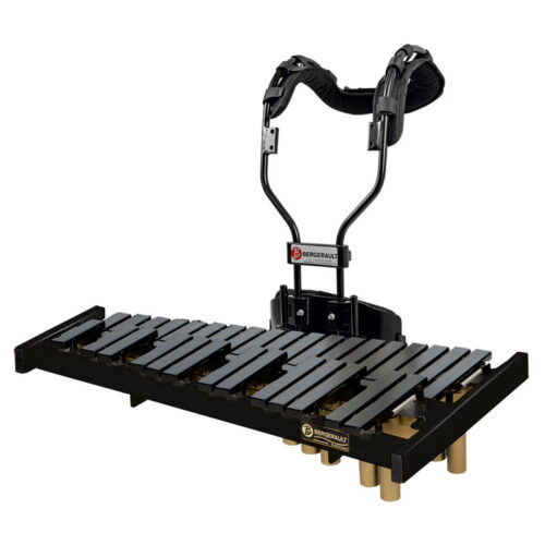 Marching Xylophone