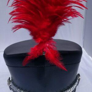 Rode pluim voor hoed