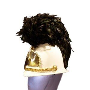 Helm pluimen