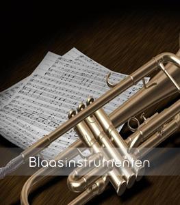 marchingshop-blaasinstrumenten