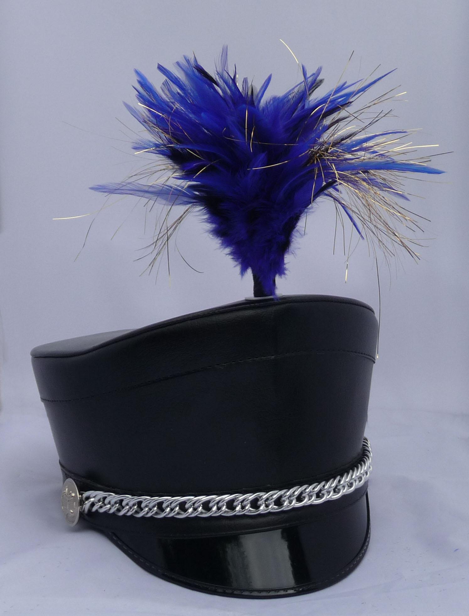 Blau Gold Schwarze plume