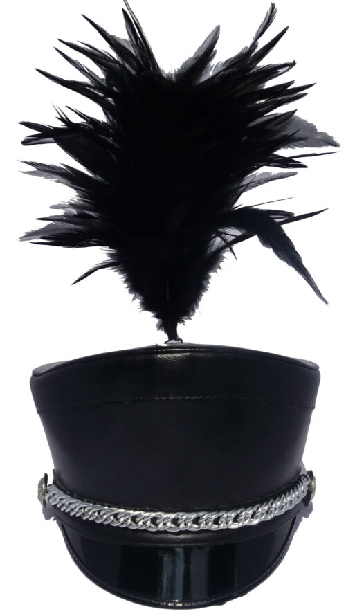 Hanenbuks pluim zwart